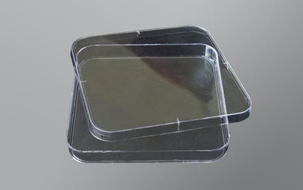 Чашки Петри,120х120 мм,ПС,квадратная,стерильные